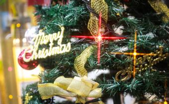 クリスマスツリー写真