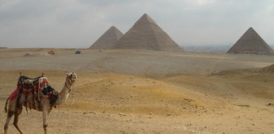 マイソン一人旅:エジプト