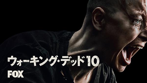 海外ドラマ『ウォーキング・デッド シーズン10』Hulu-Foxロゴ入りキービジュアル