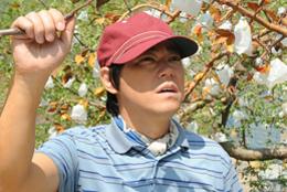 映画『奇跡のリンゴ』阿部サダヲ
