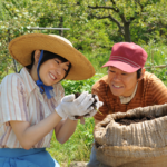 映画『奇跡のリンゴ』阿部サダヲ/菅野美穂