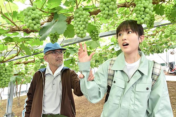 映画『しあわせのマスカット』福本莉子/竹中直人
