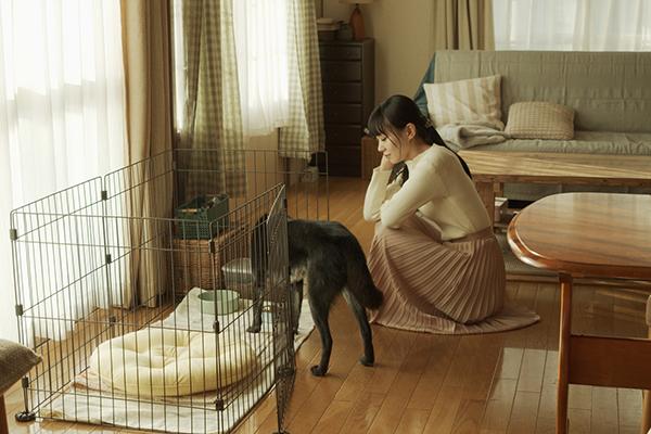 映画『草の響き』奈緒